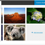 wordpress plugins to edit images