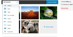 wordpress plugins to edit images